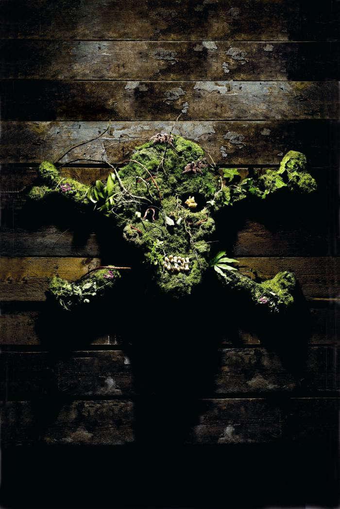 700_posion-garden-skull