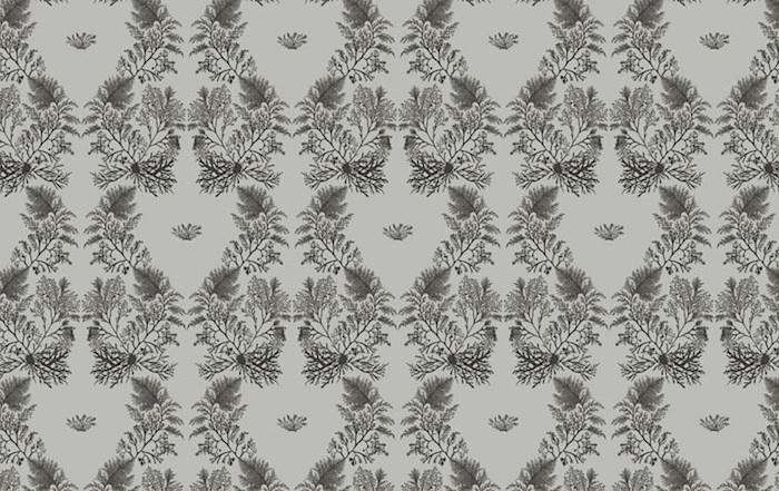 700_seaweed-brown-wallpaper-min-hogg