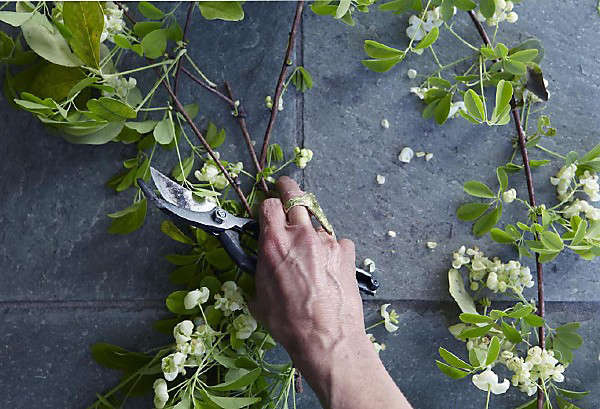 gardenista-aya-brackett-photo-1