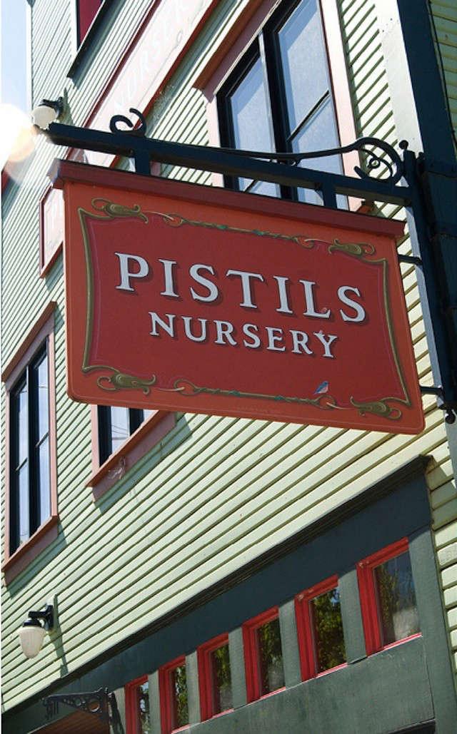 pistils-1