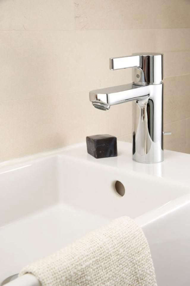 scaled-naturalist-2—faucet-view
