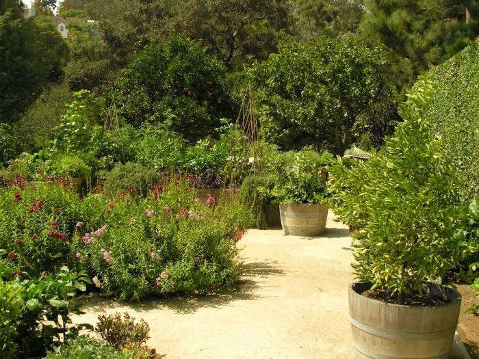 700_art-luna-wine-barrel-planter-jpeg