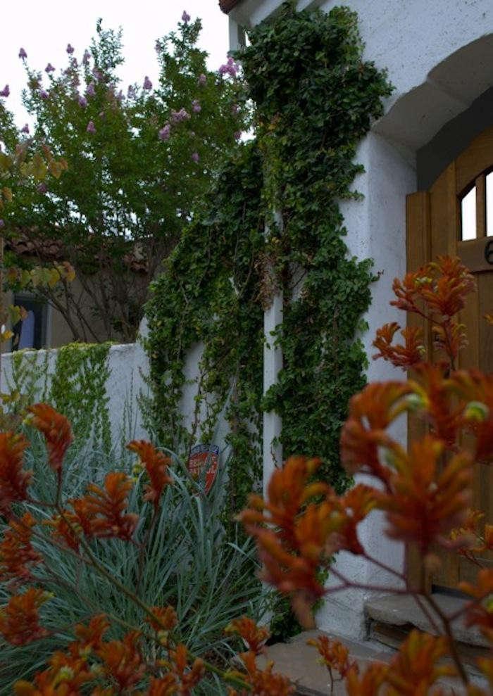 700_dabney-front-door-jpeg