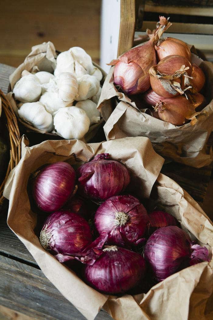 700_nicole-franzen-colored-onions