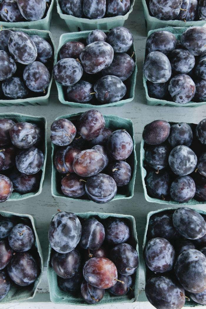 700_nicole-franzen-plums