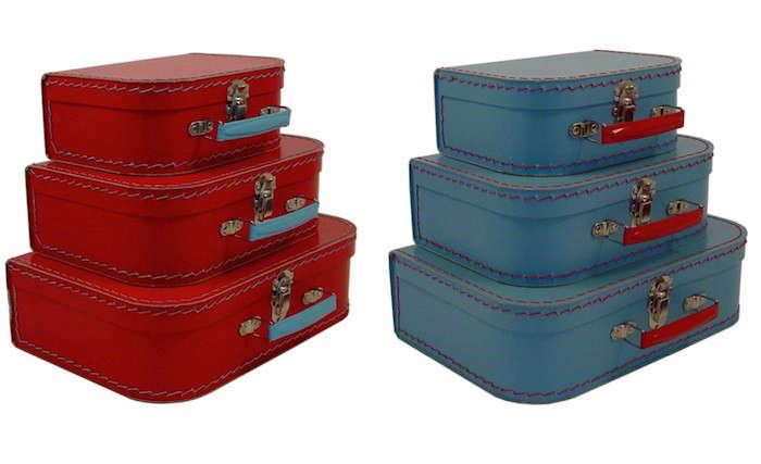 700_pomme-euro-suitcase