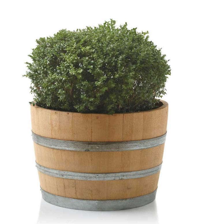 700_viva-terra-wine-barrel-planter-jpeg