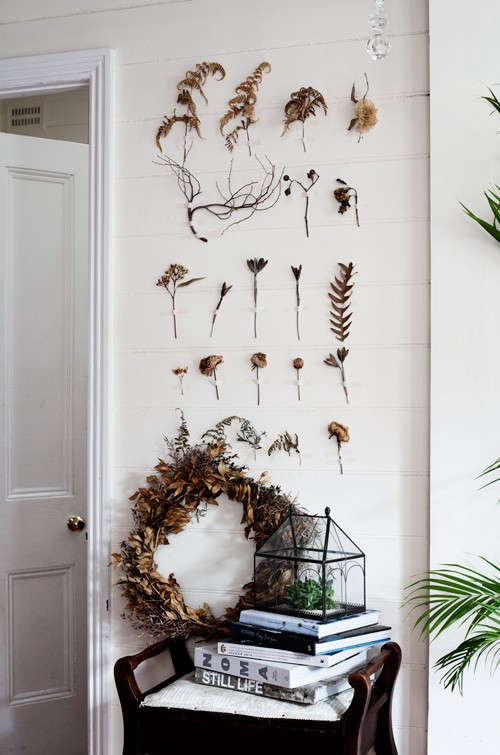 dried-flowers-taped-to-wall