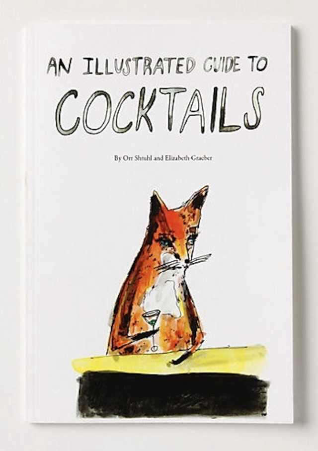 anillustratedguidetococktails