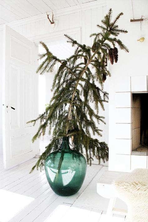 pinterest-pine-branch-green-bottle