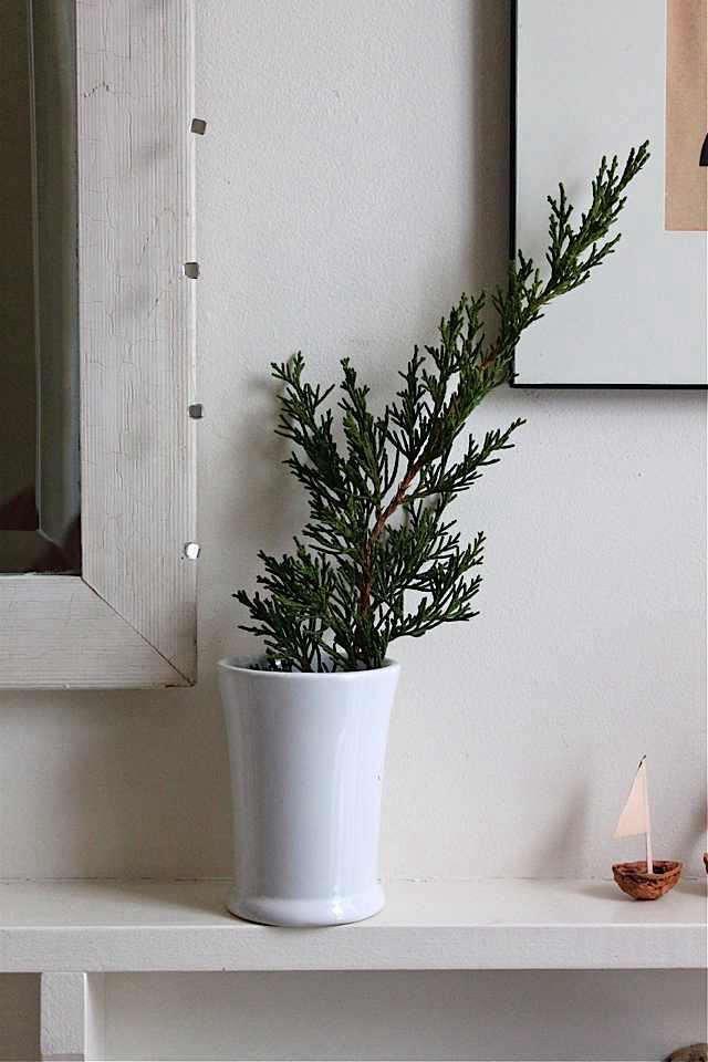 rm-foliage-design-skool