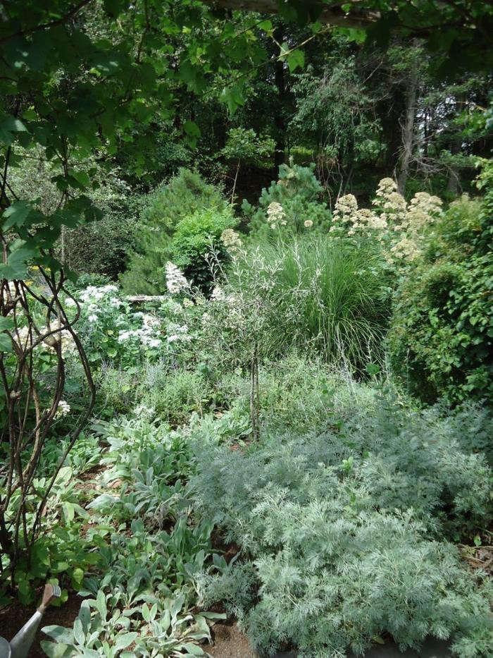 700_leva-garden-silver-border