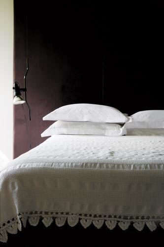 bedspread%20photo%20with%20eggplant%20wall