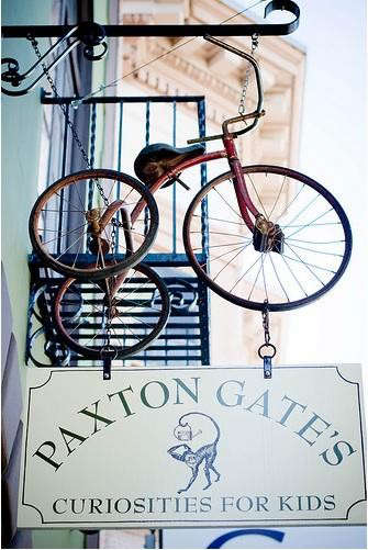 paxton%20gate's%20curiosities%20for%20kids