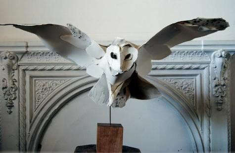 barn-owl-2
