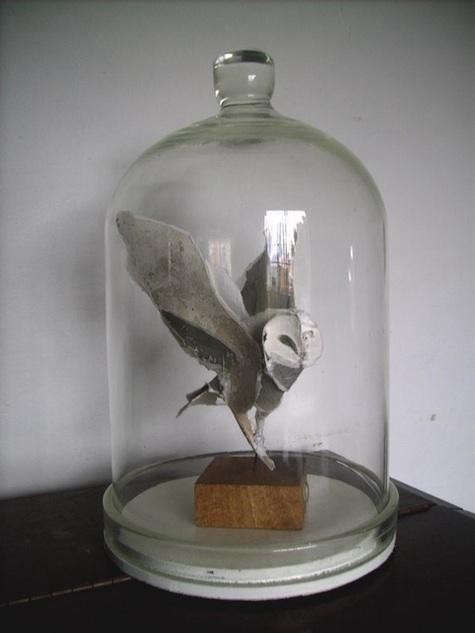 owl-in-jar