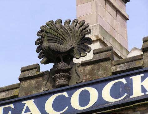 peacock-statue
