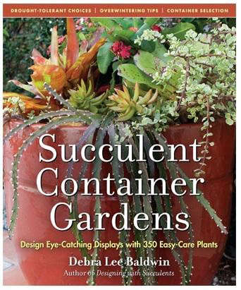succulent-container-garden-2