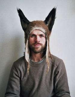 hairy-fox