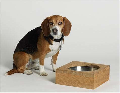 james-perse-dog-bowl