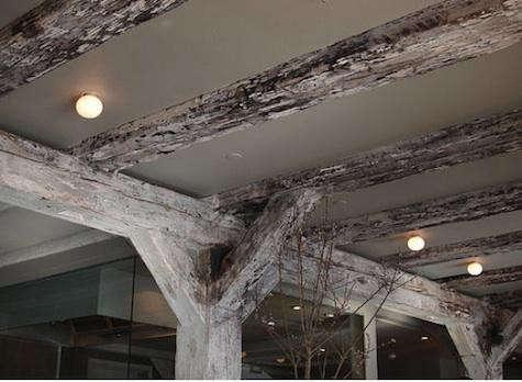 noma-ceiling