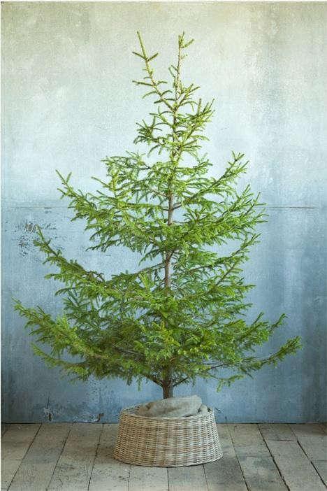 wicker-tree-skirt-2