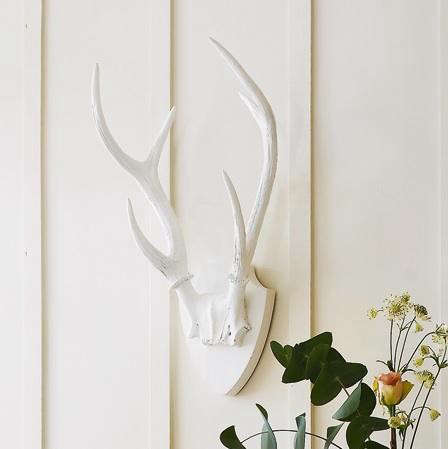 graham-green-white-antler