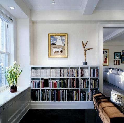 platt-dana-bookshelves-2