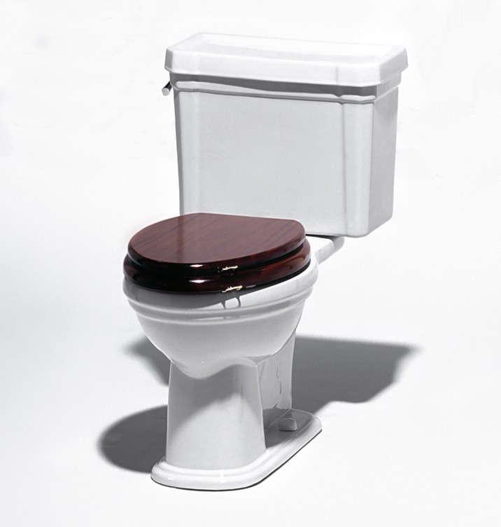 waterworks-universal-toilet-Remodelista