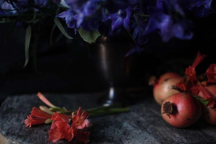 Sophia_Moreno_Bunge_Gardenista_Belgian_fruit