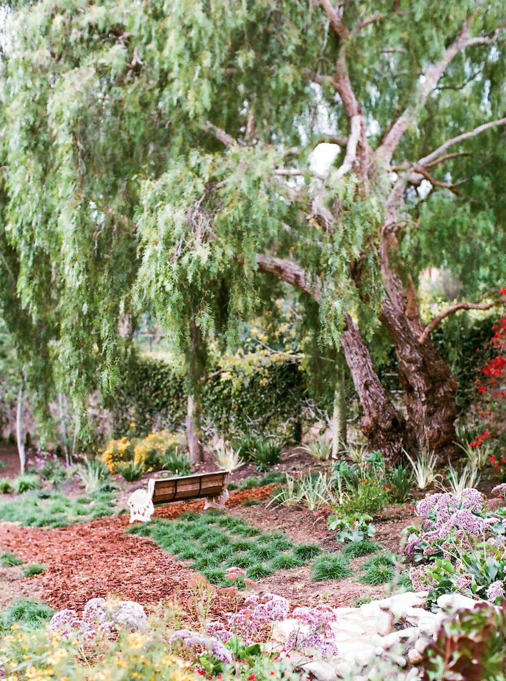 1-malibu-garden-matthew-brown-bench-mondo-grass-gardenista