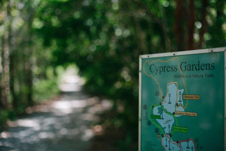 10-cyrpress-gardens-melissa-toms-gardenista