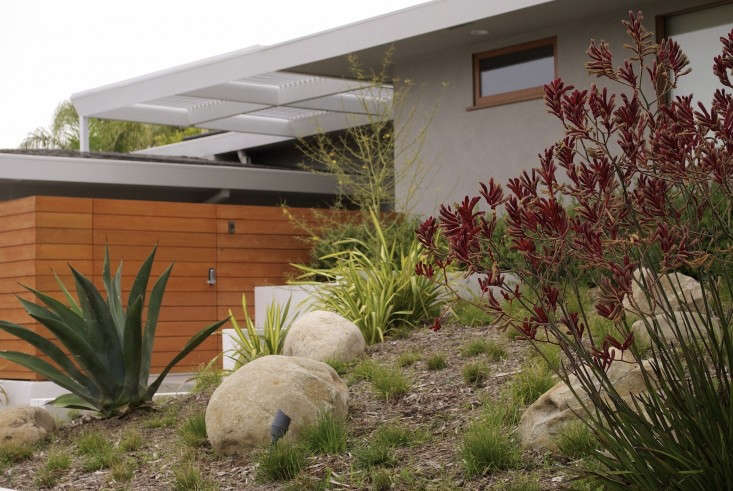 Designer visit grow outdoor design 39 s drought tolerant for Drought tolerant front garden designs