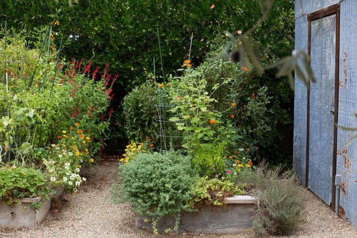 24-Cara-Garden-Mimi-Giboin-Sonoma-Gardenista