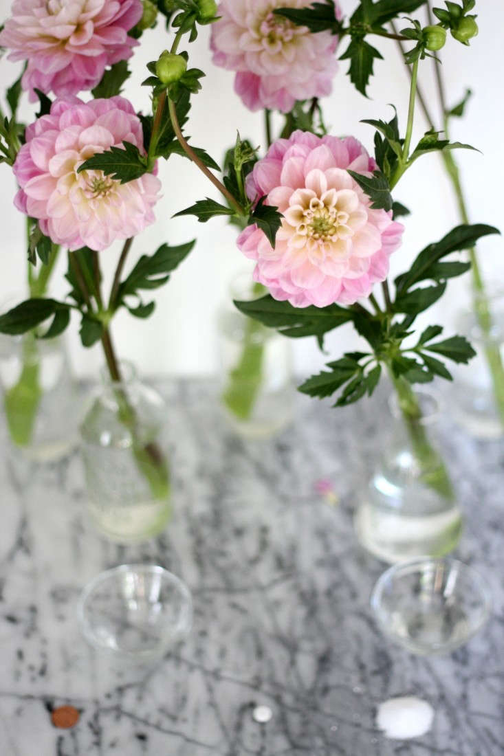 Tried And Tested How To Make Fresh Flowers Last Longer