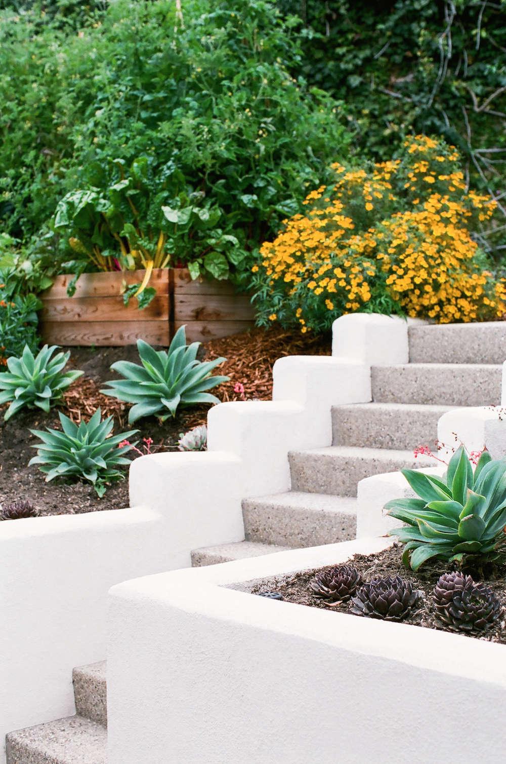 5-malibu-garden-matthew-brown-staircase-retaining-wall-gardenista