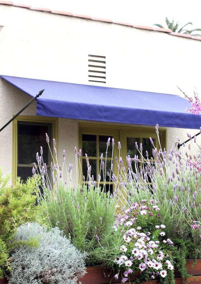 700_disc-interiors-exterior-lavender-11