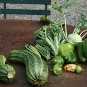 700_gardenista-edible-garden-100a