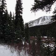 700_hike-of-the-week-colorado-5