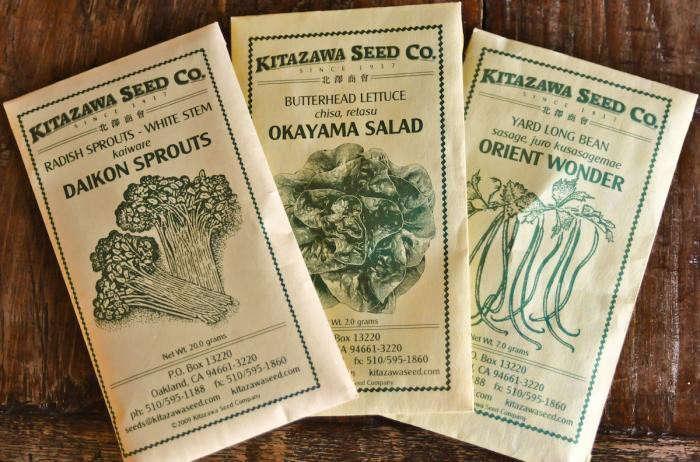 700_kitazawa-seeds-trio