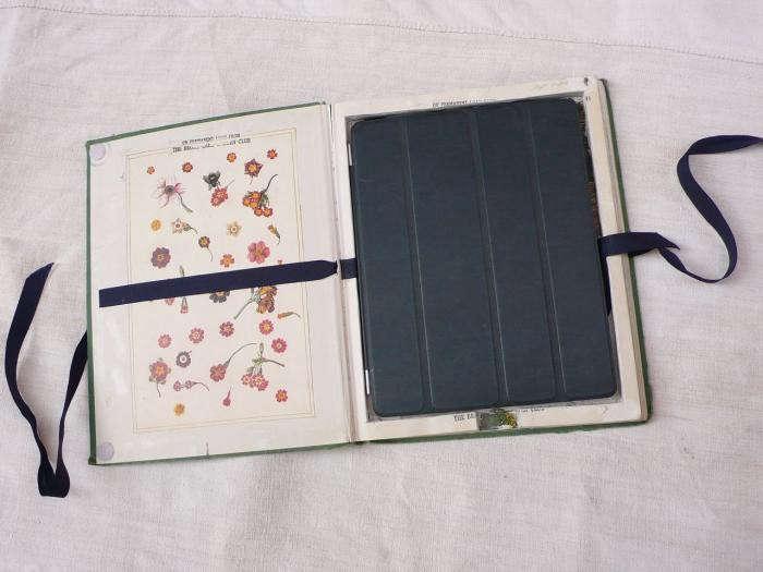 700_sally-scott-ipad-cover-02