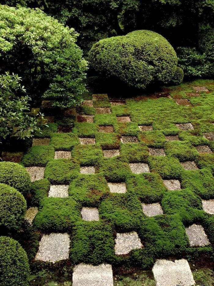 Ask the expert 7 tips for making a moss checkerboard for Checkerboard garden designs