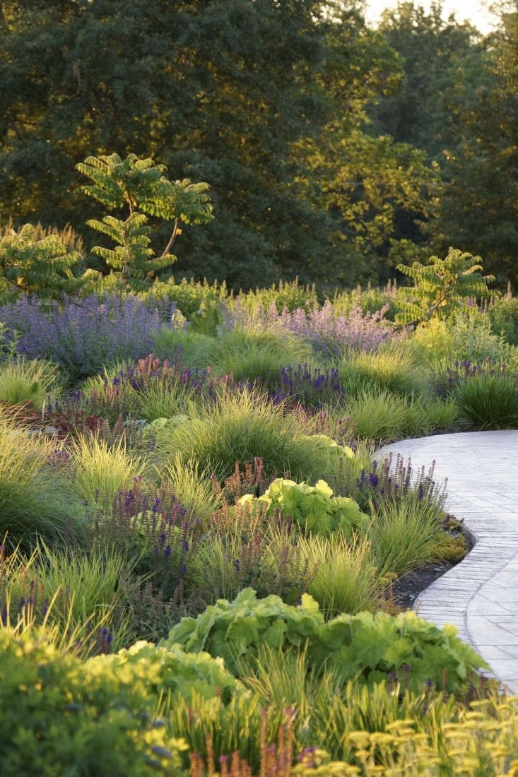 Best professional landscape winner adam woodruff for Professional landscape design