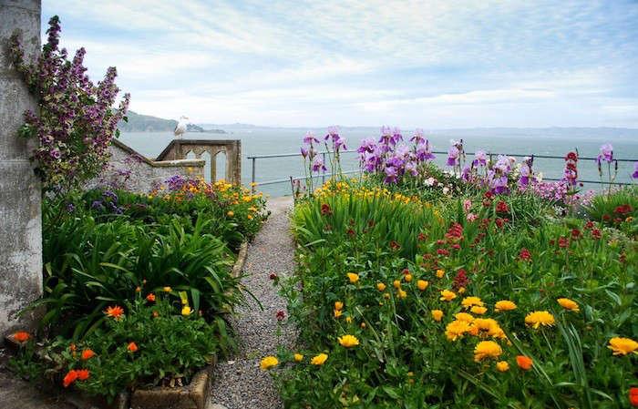 Alcatraz-Officers-Row-Garden-Image-S-Fritz-Gardenista