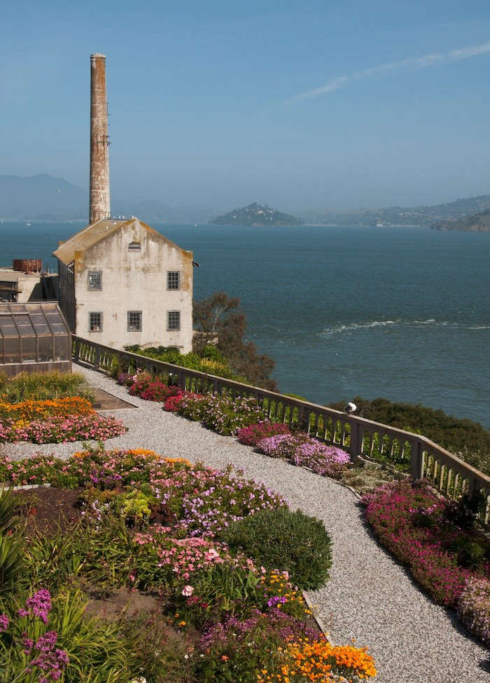 Alcatraz-Rose-Terrace-Image-Elizabeth-Byers-Gardenista