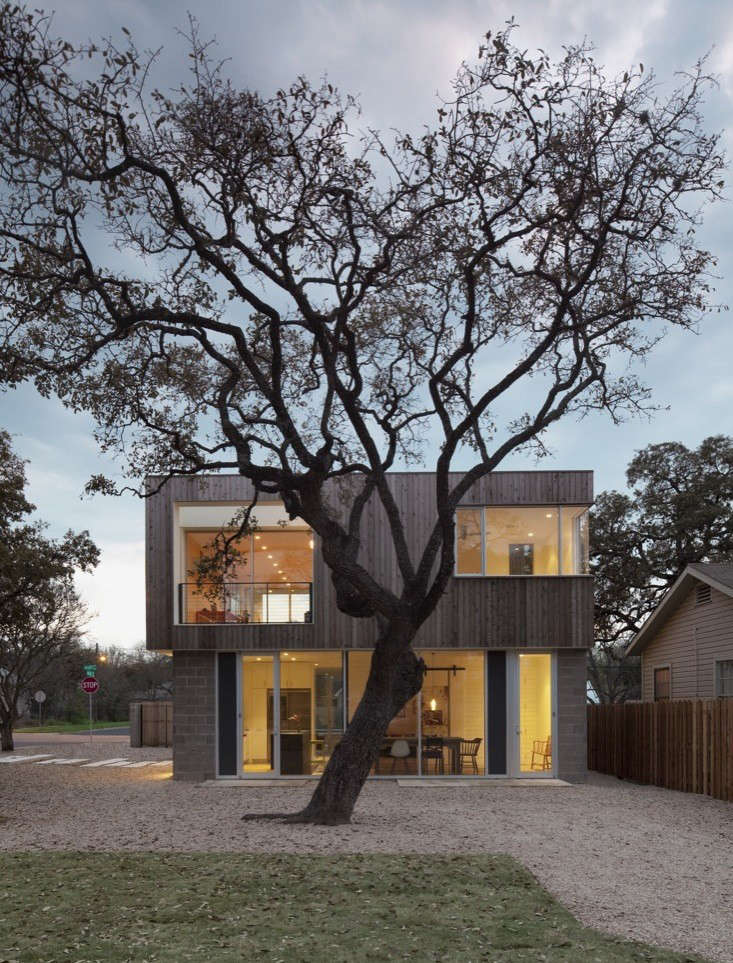 Alter-studio-bouldin-residence-austin-large-tree-gardenista