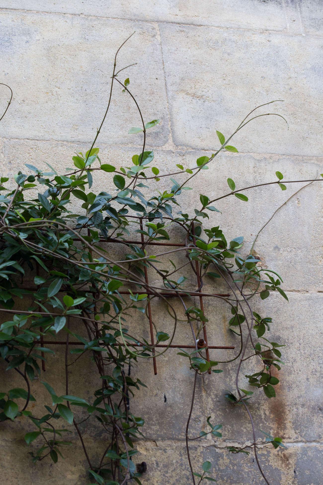 Ambre-store-france-mimi-giboin-gardenista-033