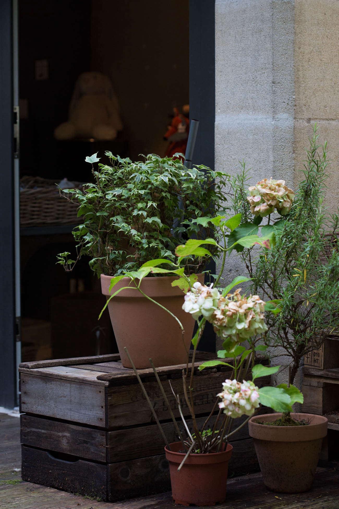 Ambre-store-france-mimi-giboin-gardenista-040