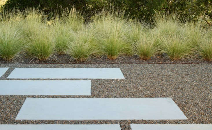 Andrea Cochran Geyserville Grasses and Concrete Path, Gardenista