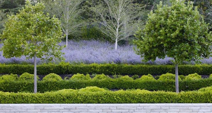 Andrea-Cochran-Landscapes-Grand-Garden-in-California-Gardenista